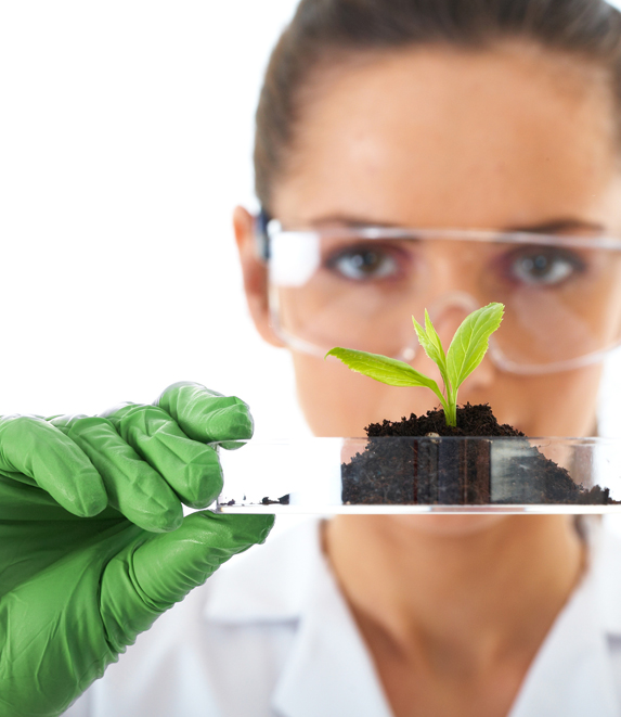 What does HUMIC ACID mean?
